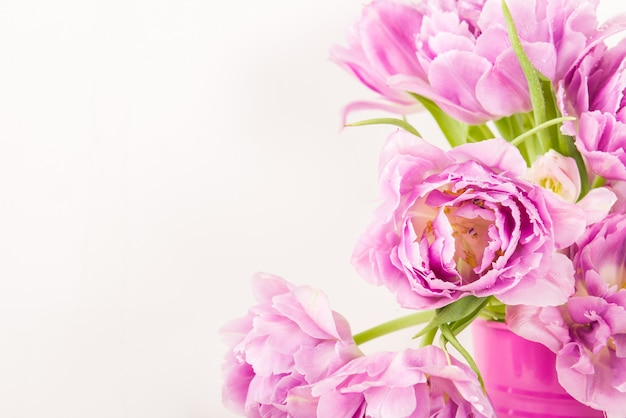 Beautiful bunch of peony style tulips in the pink pot Premium Photo