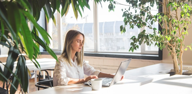 Beautiful caucasian woman working on a laptop remotely in a bright space with green plants. Premium Photo