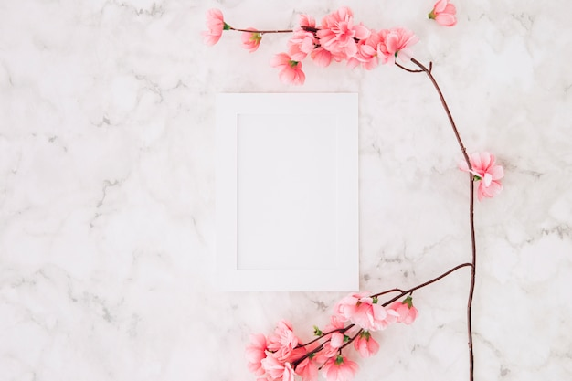Beautiful cherry blossom sakura in spring near the white empty picture frame on textured background Free Photo