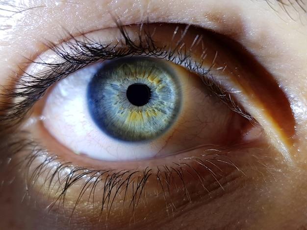 Bello colpo del primo piano degli occhi blu profondi di un essere umano femminile Foto Gratuite