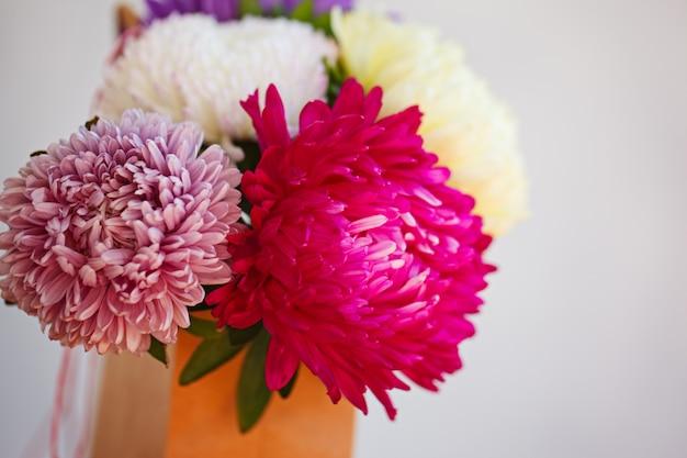Beautiful Colorful Aster Flower Bouquet Soft Focus Photo Premium