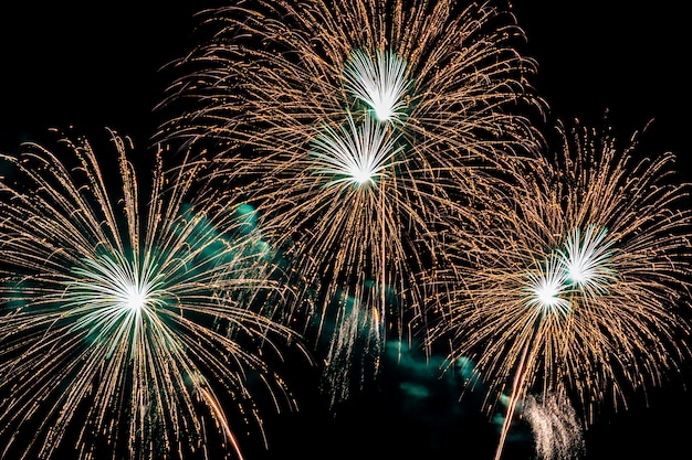 Beautiful colorful firework display at night for celebrate Free Photo
