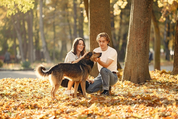 美しいカップルは秋の公園で時間を過ごす 無料写真