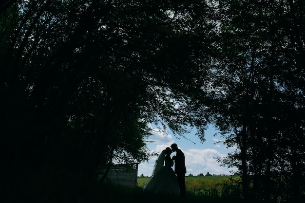 Beautiful couple in the woods on a background of forest clearance on the field Free Photo