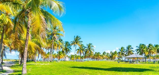 Beautiful crandon park beach in key biscayne in miami Premium Photo