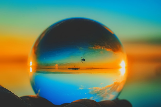Beautiful creative lens ball photography of a swimming crane in the sea Free Photo