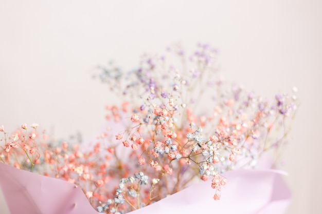 Beautiful decoration cute little dried colorful flowers, wallpaper. Free Photo