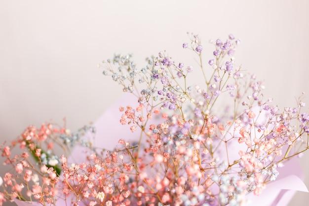 美しい装飾かわいい小さな乾燥したカラフルな花、壁紙。 無料写真