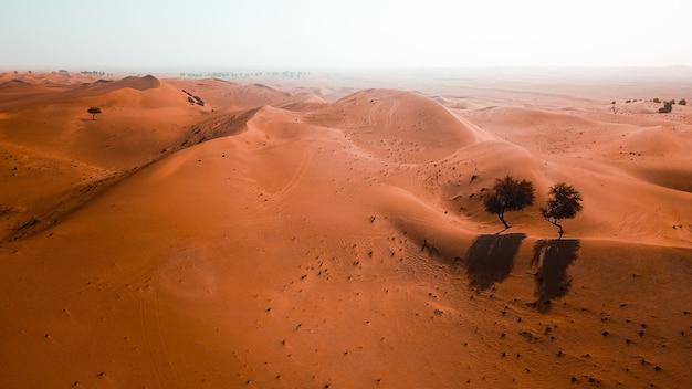 晴れた日に砂丘と美しい砂漠 無料写真