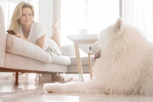 Bel cane e donne in casa Foto Gratuite