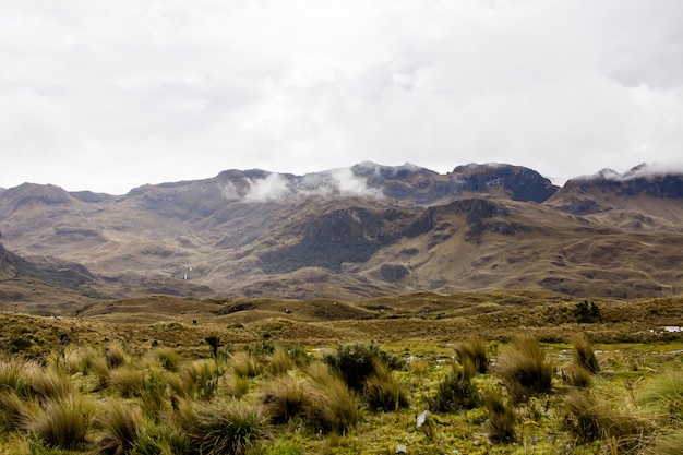 背景に素晴らしいロッキー山脈と丘と素晴らしい曇り空のある美しいフィールド 無料写真