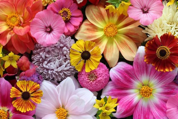 Красивый цветочный фон, вид сверху. букет садовых цветов. естественный фон. Premium Фотографии