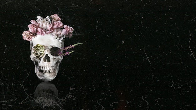 Beautiful floral skull with black copy space background Free Photo
