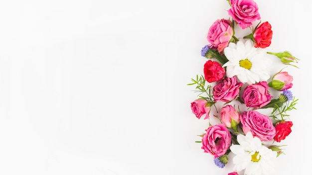 Beautiful Fresh Flowers Against White Background Photo Free Download
