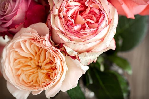 さまざまな色の美しい新鮮なバラがクローズアップ 無料写真