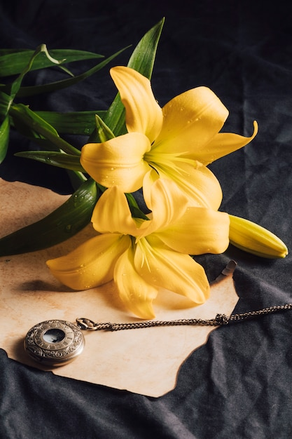 Beautiful fresh yellow blooms in dew near craft paper and old pocket watch Free Photo