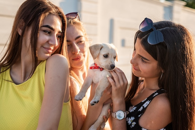 Beautiful friends playing with cute dog Free Photo