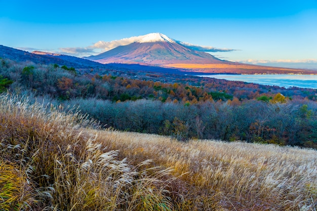 Beautiful fuji mountain in yamanakako or yamanaka lake Free Photo