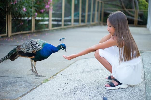 美しい少女が公園で孔雀に餌をやる、かわいい赤ちゃん。 Premium写真