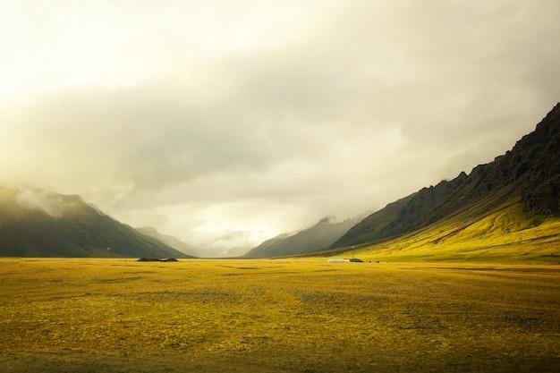 놀라운 흐린 아름다운 골든 필드 무료 사진