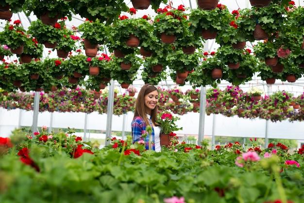 화분에 심은 식물을 들고 화려한 꽃밭을 걷는 이빨 미소로 아름 다운 화려한 여자 꽃집 무료 사진