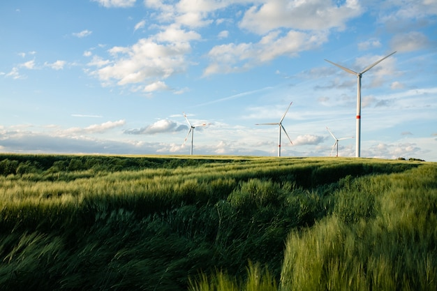 Beautiful grassy field with windmills in the distance under a blue sky Free Photo