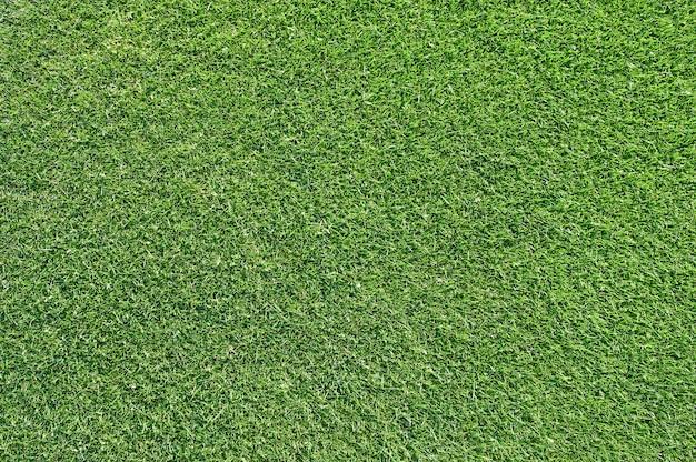 Красивая текстура зеленой травы от поля для гольфа Premium Фотографии