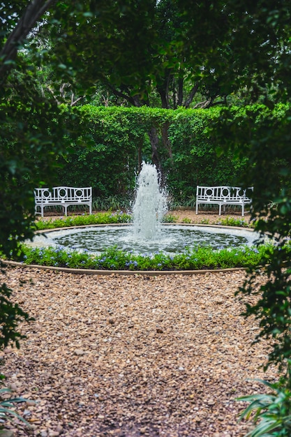 Beautiful green park garden with small fountain and bench Premium Photo