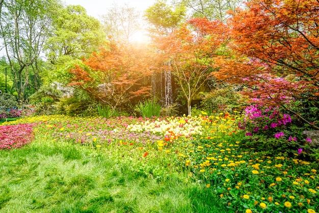아름다운 녹색 공원 무료 사진