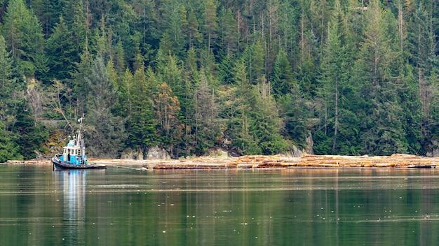 Красивый зеленый пейзаж на озере в сквомиш, британская колумбия, канада Бесплатные Фотографии