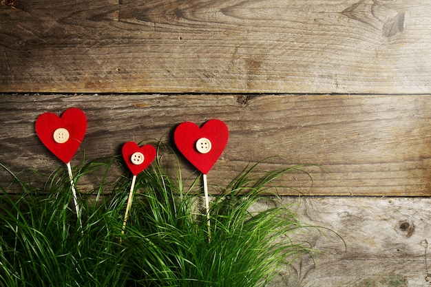 Beautiful Hearts Flowers on Green Grass, Valentine's Day or Love Concept. Free Photo
