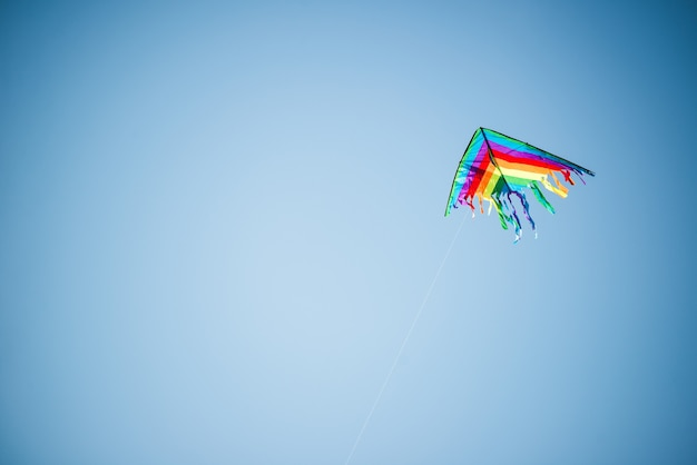 Beautiful kite in bright colors of the rainbow flies against a sunny blue sky Premium Photo