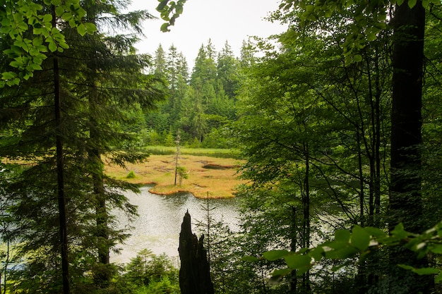 Красивое озеро в горах Бесплатные Фотографии