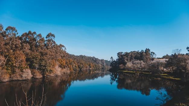 海岸沿いの木々がたくさんある崖の反射で美しい湖 無料写真