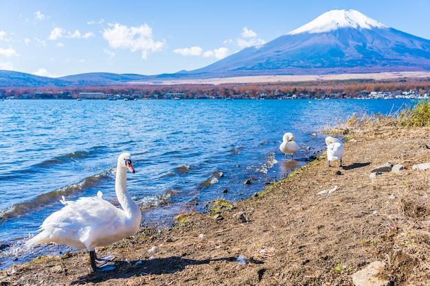 Beautiful landscape of mountain fuji around yamanakako lake Free Photo