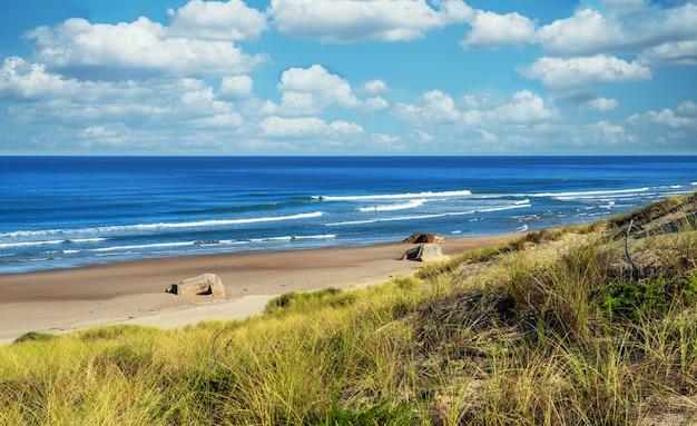 Красивый пейзаж океанского пляжа и волн Premium Фотографии