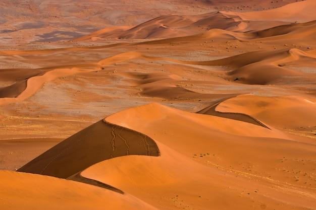 Красивый ландшафт песка оранжевой песчанной дюны оранжевого на пустыне namib в национальном парке sossusvlei namib-naukluft в намибии. Бесплатные Фотографии