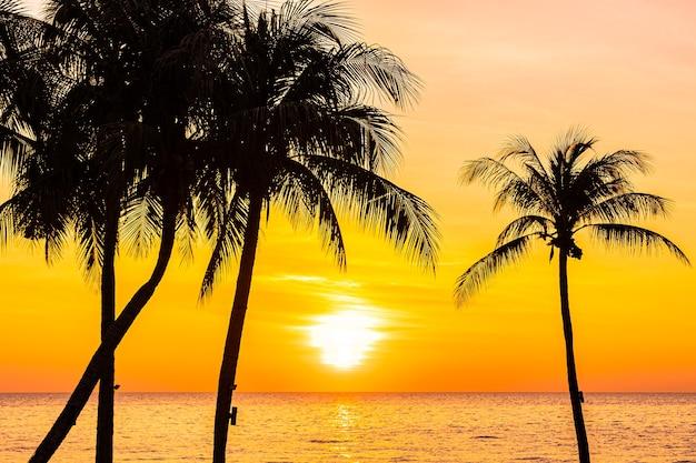 日没または日の出のシルエットのココヤシの木と海の海の美しい風景 無料写真