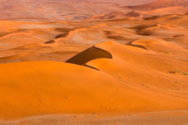 Bello paesaggio della sabbia arancio della duna di sabbia arancio al deserto di namib nel parco nazionale sossusvlei di namib-naukluft in namibia. Foto Gratuite