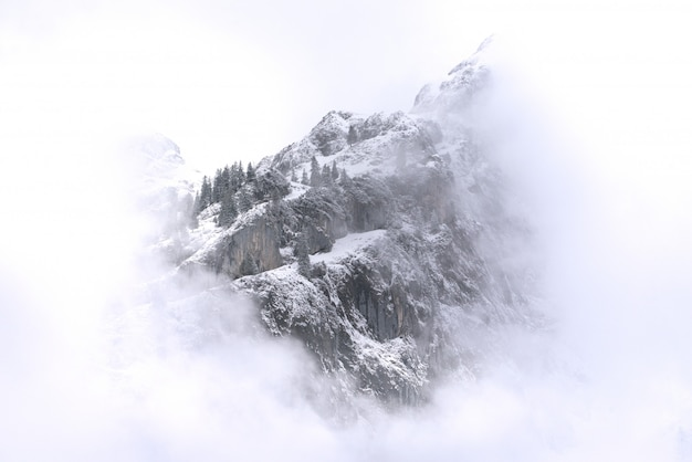 Beautiful landscape of snowy mountains and fog between peaks. Premium Photo