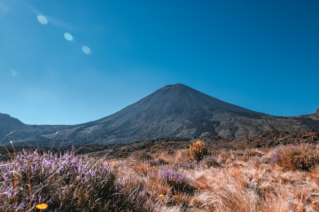 Beautiful landscape view of tongariro crossing track on a beautiful day with blue sky, north island, new zealand.. Premium Photo