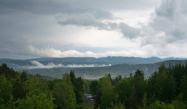 Красивый пейзаж с множеством елей и гор Бесплатные Фотографии