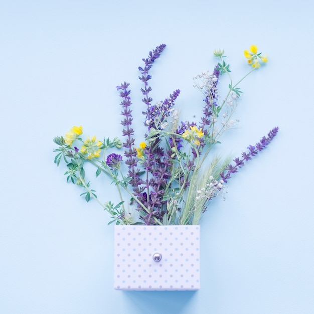 Beautiful lavender flowers in the polka dot box over the blue background Free Photo