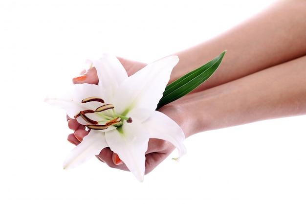 Fiore di giglio bella nelle mani di donna Foto Gratuite