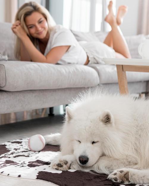 Cane e donna belli e adorabili Foto Gratuite
