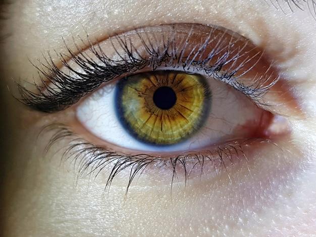 Beautiful macro closeup shot of a female human's deep eyes Free Photo