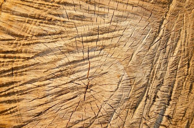Beautiful macro texture of stones, corrosion, wood home objects. Premium Photo