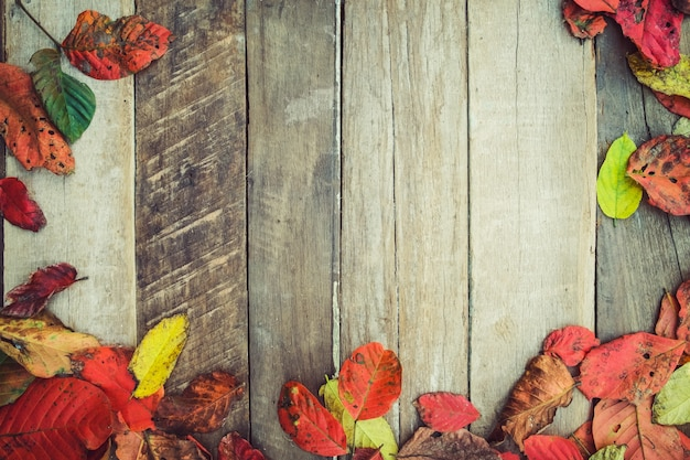 Beautiful maple leaves on vintage wooden background ...