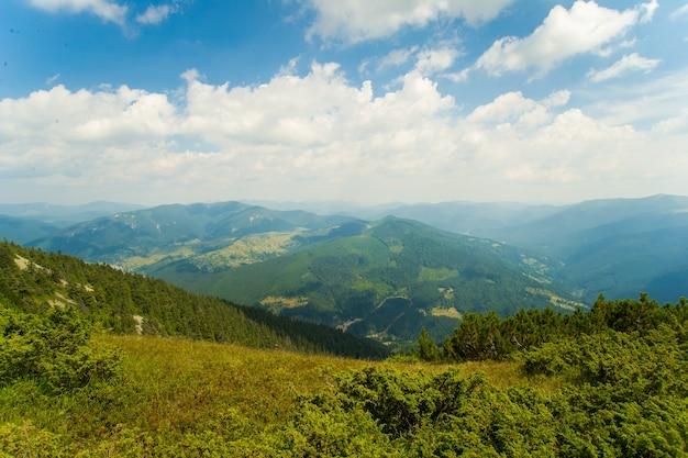 Bellissimi prati sulle montagne Foto Gratuite