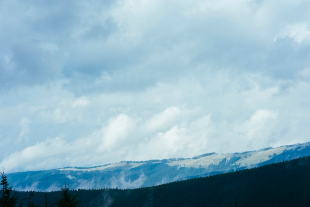 Beautiful mountain landscape with forest natural park and cloudscape Free Photo